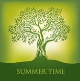 Baum Junge Erwachsene Frühling Lizenzfreie Stockbilder
