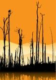 Baum-Kabel stock abbildung
