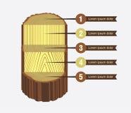 Baum-Klotz Sawing-Entwurf Stockbilder