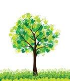 Baum-Konzept Stockbild
