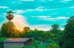 Baum lässt Himmel und Sonne auf undeutlichem Vordergrund mit Baumhintergrund im Garten der forestUsing Tapete oder des Hintergrun Lizenzfreie Stockbilder