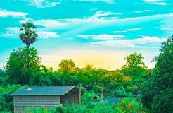 Baum lässt Himmel und Sonne auf undeutlichem Vordergrund mit Baumhintergrund im Garten der forestUsing Tapete oder des Hintergrun Lizenzfreies Stockbild