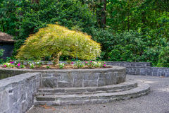 Baum-Landschaftsgestaltung Lizenzfreies Stockfoto