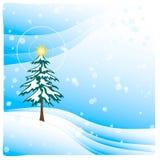 Baum in leicht fallendem Schnee Stockbilder