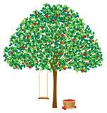 Baum mit Äpfeln Stockfotos