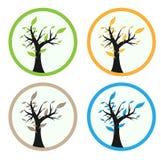 Baum mit 4 Jahreszeiten Stock Abbildung