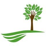 Baum mit Blättern und Stamm in der Formhand im Berg lizenzfreie abbildung