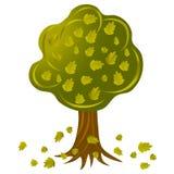 Baum mit fallenden Blättern lizenzfreie stockfotografie