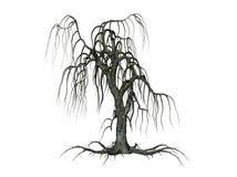 Baum mit fallenden Zweigen Stockbild