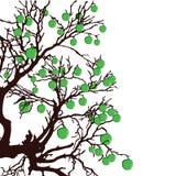 Baum mit grünem Apfelfarbvektor Stockbilder