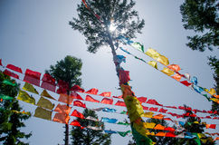 Baum mit religiösen Texten stockbild