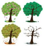 Baum mit vier Jahreszeiten Lizenzfreies Stockfoto