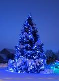 Baum mit Weihnachtsleuchten im Blau Stockfotografie