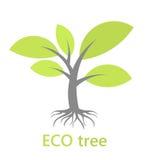 Baum mit Wurzeln Lizenzfreie Stockfotos
