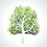 Baum mit Zweigen und Blättern Stockfotografie