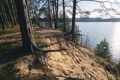 Baum nahe dem Wasser von Fluss am sonnigen Frühlingstag Stockfotos