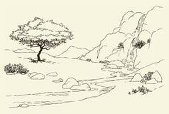 Baum nahe einem Gebirgsstrom in der Wiese Stockfotografie