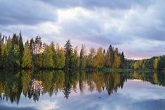 Baum reflektiert im Fluss Lizenzfreies Stockfoto