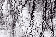 Baum-Reflexionen im Pool des Wassers Stockfotos