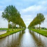 Baum rudert auf den Kanalseiten und -reflexion auf Wasser nahe Amsterdam. Die Niederlande Lizenzfreie Stockbilder