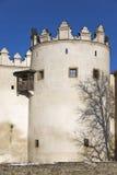 Baum-Schatten geworfen auf Kezmarok Schloss Stockfotografie
