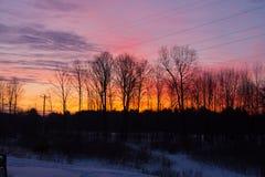 Baum-Schattenbilder gedrückt gegen einen bunten Sonnenaufgang Lizenzfreies Stockfoto