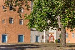 Baum am Schlossquadrat von Hann Munden stockfotografie