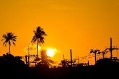 Baum am Sonnenuntergang Lizenzfreies Stockfoto