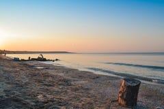 Baum-Stumpf auf dem Strand Lizenzfreie Stockfotografie