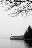 Baum u. helles Haus am Schacht Lizenzfreies Stockbild