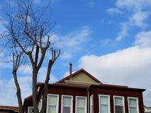 Baum und alte Struktur von hundert Jahren Stockbilder