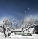 Baum und Blockhaus im Winter Lizenzfreies Stockbild