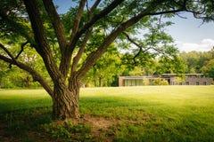 Baum und die Besucher-Mitte an Cylburn-Arboretum in Baltimore, stockfotos