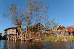 Baum und ein Stapel bringt Dorf unter Stockfotografie