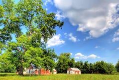 Baum und Gebäude im Coun Stockbild