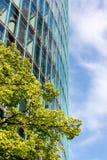 Baum und glasiges Gebäude Stockfotografie