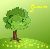 Baum und Gras Lizenzfreie Stockbilder