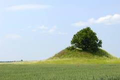 Baum und Hügel Lizenzfreie Stockfotografie