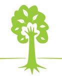 Baum und Hand - kreative Umweltauslegung Stockfotos