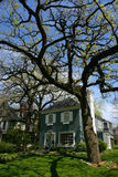 Baum und Haus im Eichen-Park Stockbild