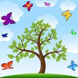 Baum und helle varicoloured Schmetterlinge stock abbildung