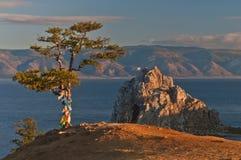 Baum und Kap Lizenzfreies Stockfoto