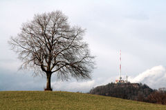 Baum und Kontrollturm auf einem Hügel Stockfotos