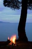 Baum und Lagerfeuer Stockfotos