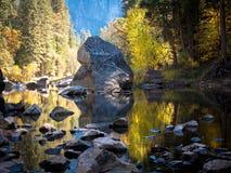 Baum-und Laub-Reflexionen der Merced-Fluss in Yosemite Lizenzfreies Stockbild
