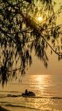 Baum und Meer auf Sonnenaufgang Stockfoto