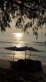 Baum und Meer auf Sonnenaufgang Stockfotografie