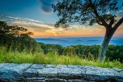 Baum und Sonnenuntergang über dem Shenandoah Valley, gesehen von Skyline-Dr. Stockfotos