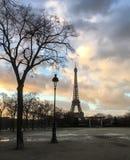 Baum- und Straßenlaterne hallen vertikale Reichweite des Eiffelturms bei Sonnenuntergang wider stockbild