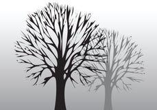Baum und Umgebung lizenzfreie abbildung